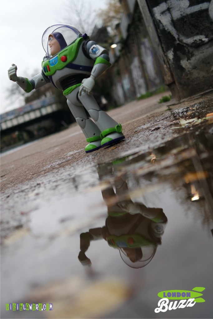 Buzz On Tour - Buzz walking Regent's Canal - photograph copyright David Bailey (not the)