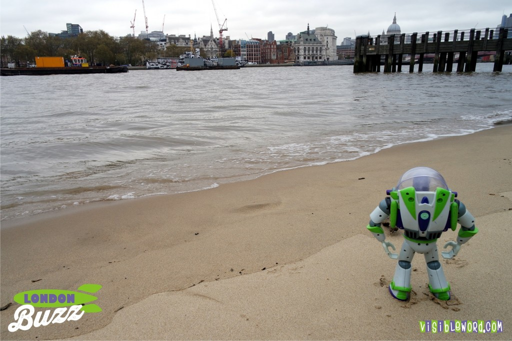 Buzz On Tour - Buzz walking down the river beach - photograph copyright David Bailey (not the)