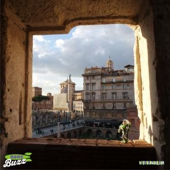Rome Buzz - Trajan's Market - photograph copyright David Bailey (not the)